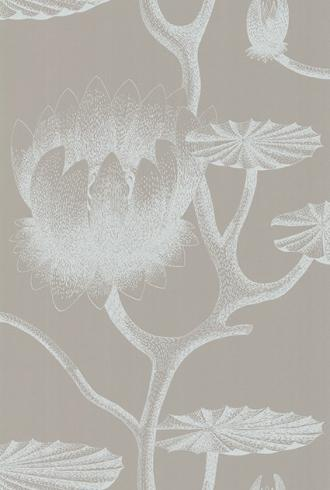 Lily by Cole & Son