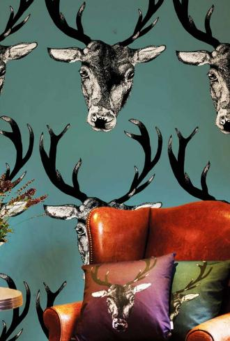 Stag By Graduate Collection