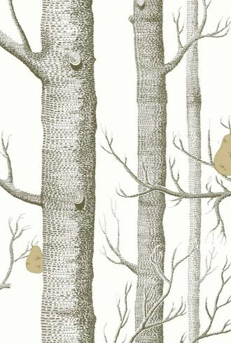 Woods And Pears By Cole and Son