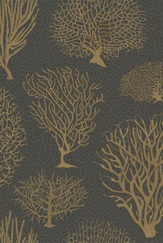 Seafern By Cole and Son