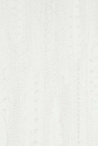 Curious Feathers By BN Wallcoverings