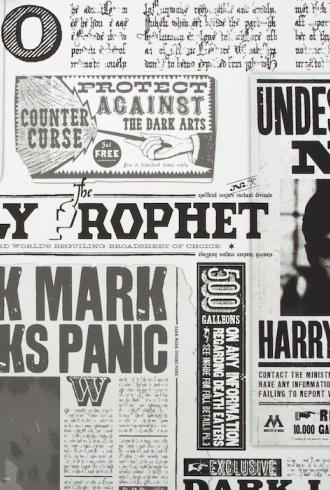 Daily Prophet - Harry Potter by Graham & Brown