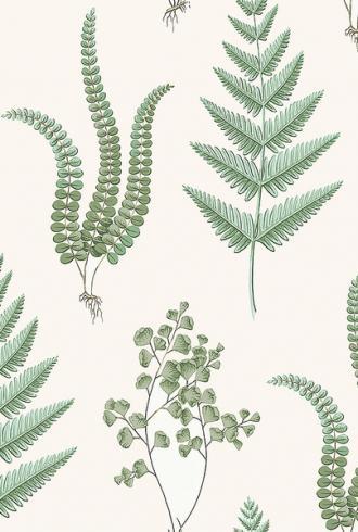 Herba by Borastapeter
