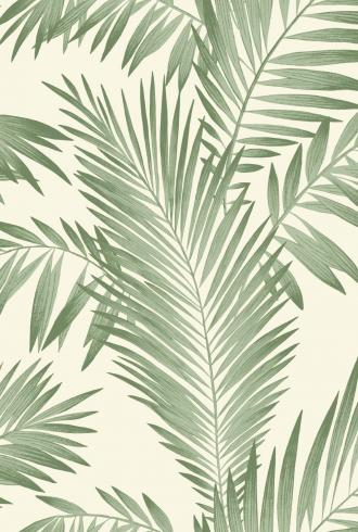 Tropical Palm by Arthouse