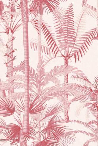 PALMERA CUBANA Pink