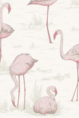 Flamingos  By Cole and Son