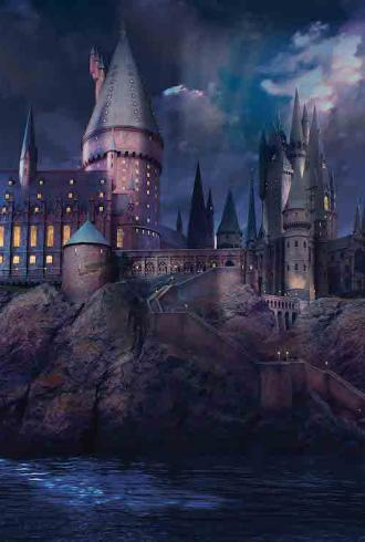 Hogwarts Mural by Graham & Brown