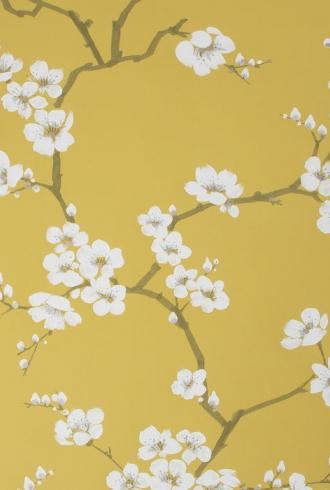 Apple Blossom by Fresco