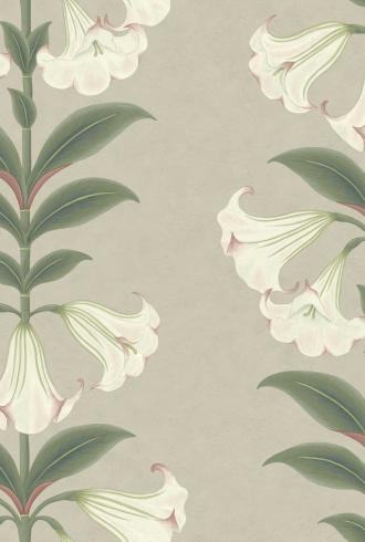 Angel's Trumpet by Cole & Son
