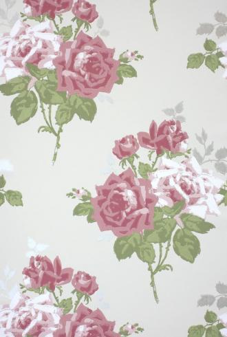 Rosa Alba by Nina Campbell
