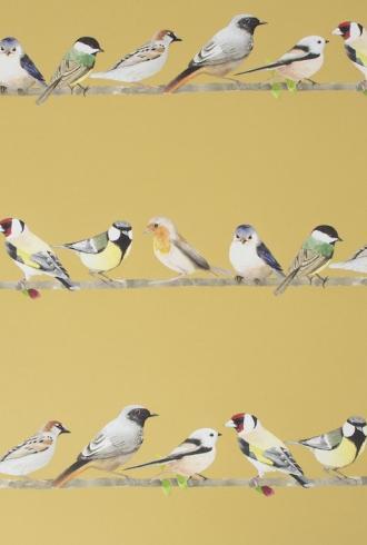 Tweeting by Fresco