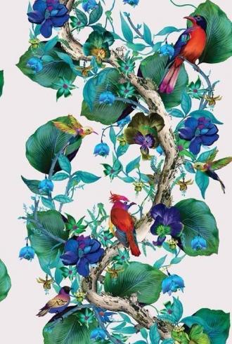 Rain Forest by Osborne & Little