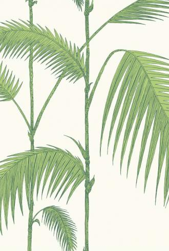 Palm By Cole and Son