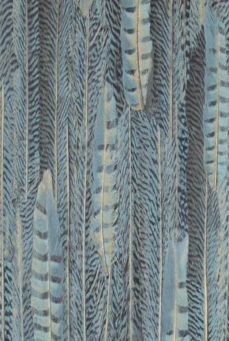 Curious Feathers 17962 By BN Wallcoverings