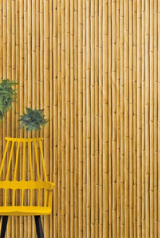 Bamboo Buzz By Wemyss