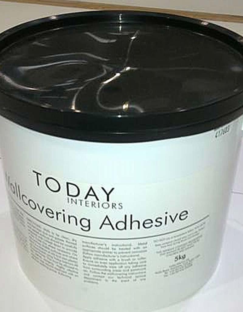 Today Interiors Adhesive 5Kg