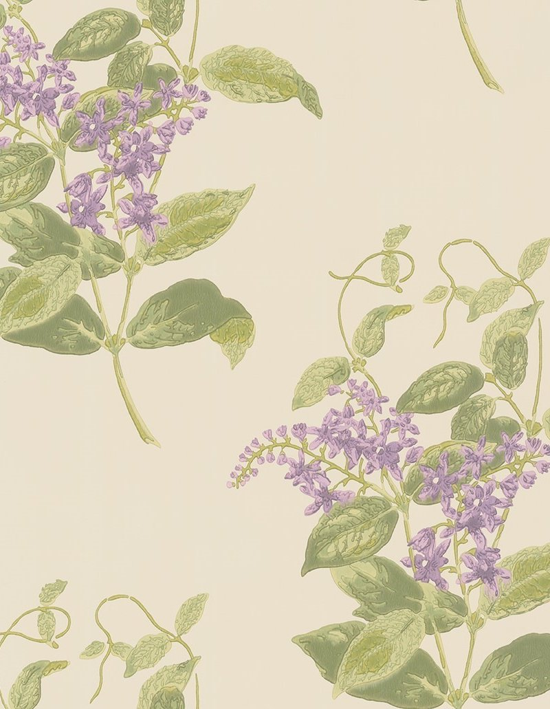 Madras Violet by Cole & Son