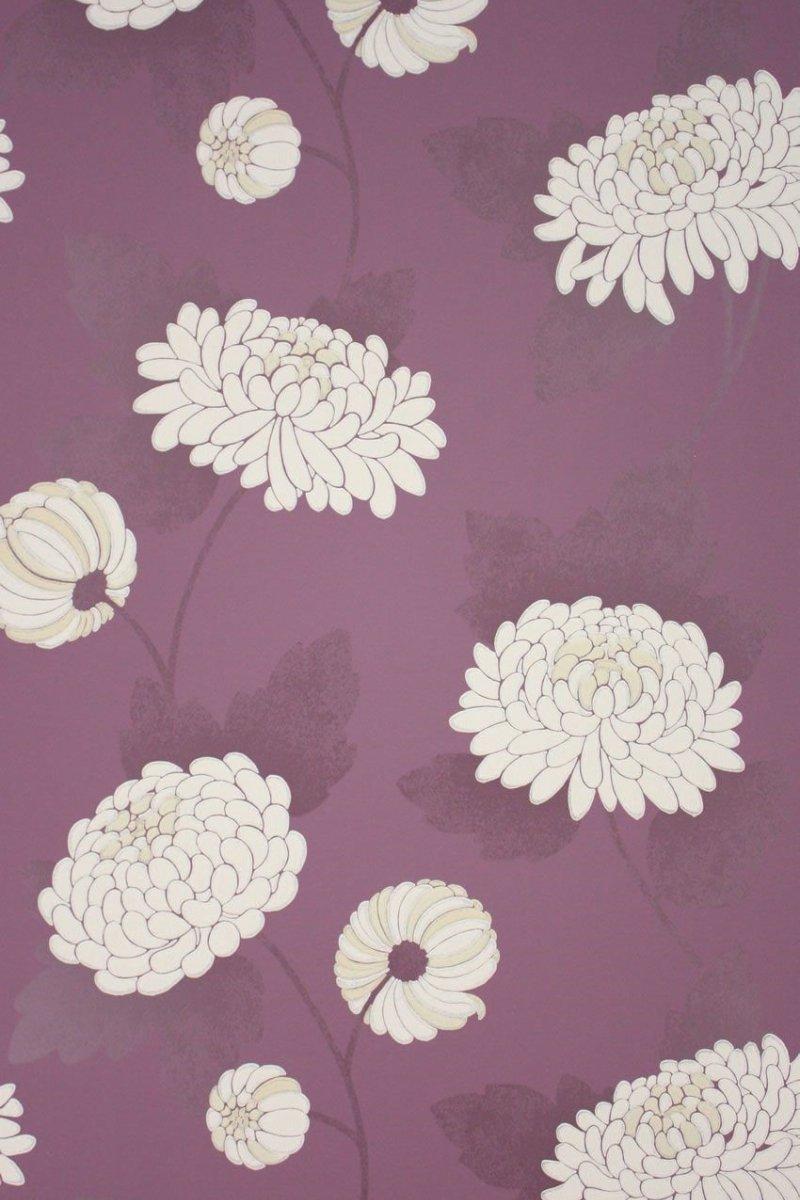 Wilde Chrysanthemum by Osborne & Little