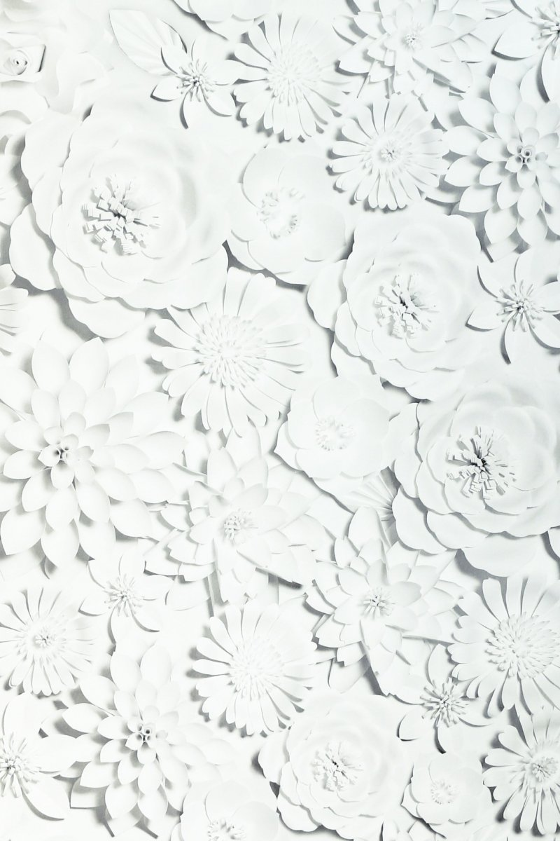 3D Flower Wall White by Arthouse