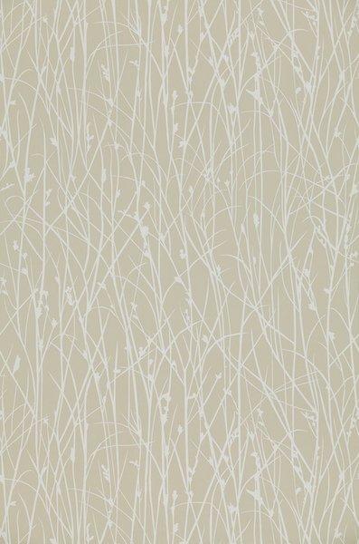 Grasses by Harlequin
