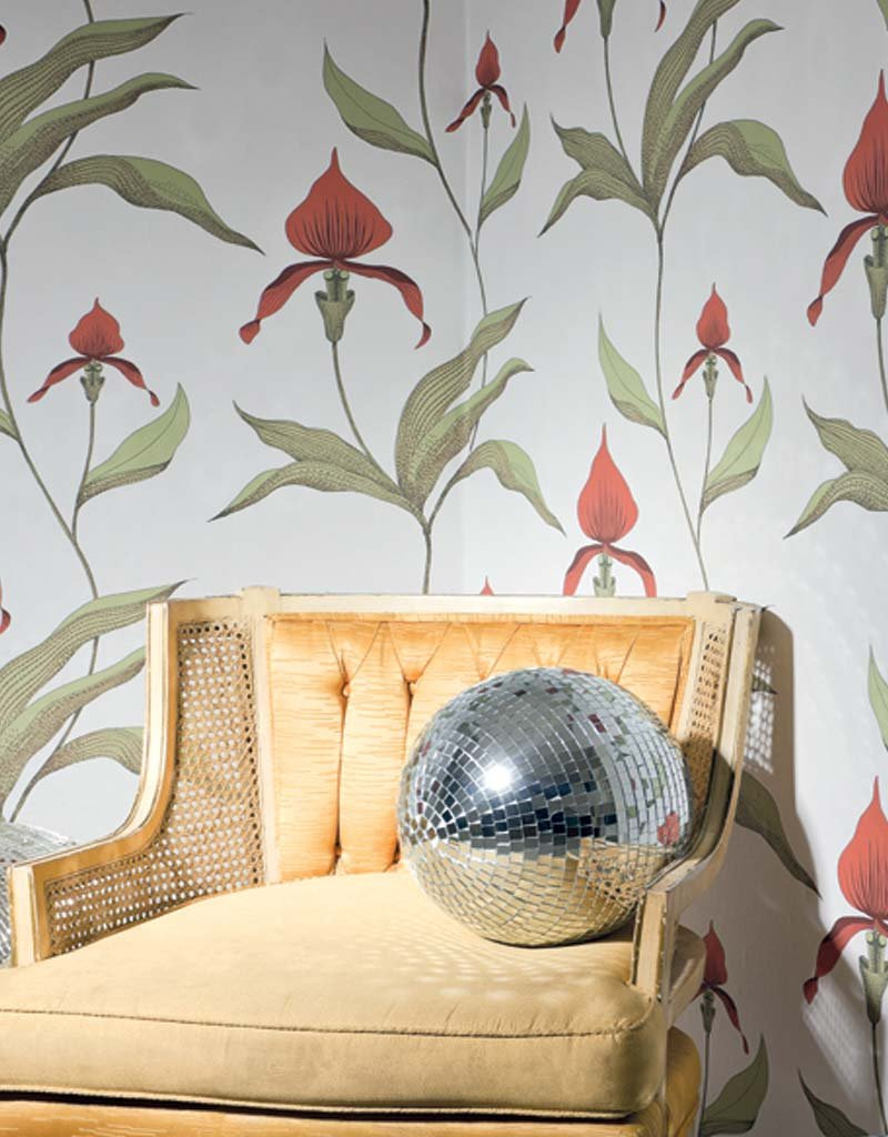 Orchid Restyled 95/10054 by Cole and Son